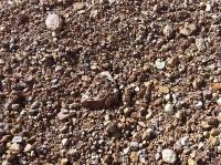 Сланец глинистый